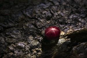 Rubis étoilé - Découvrez de superbes bijoux en Rubis étoilé chez Juwelo, vente de bijoux en ligne.