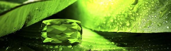 Découvrez de superbes bijoux sertis de véritables Péridots.