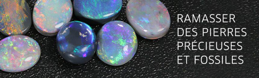 droit de collectionner les pierres précieuses