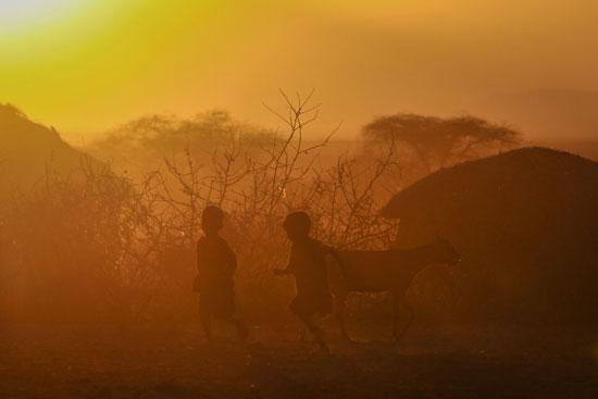 La tanzanite de Tanzanie