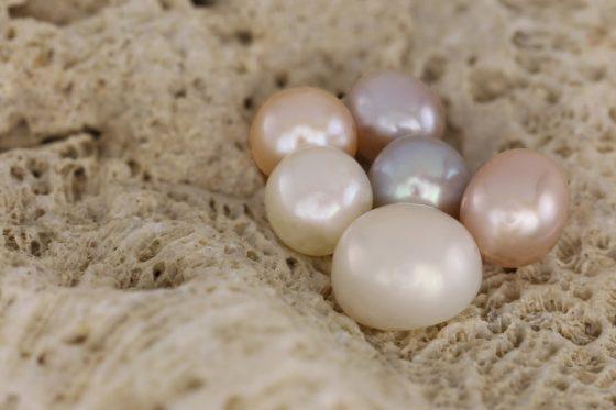 Les perles provenant des huîtres.