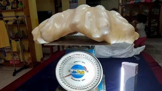 La plus grosse perle du monde